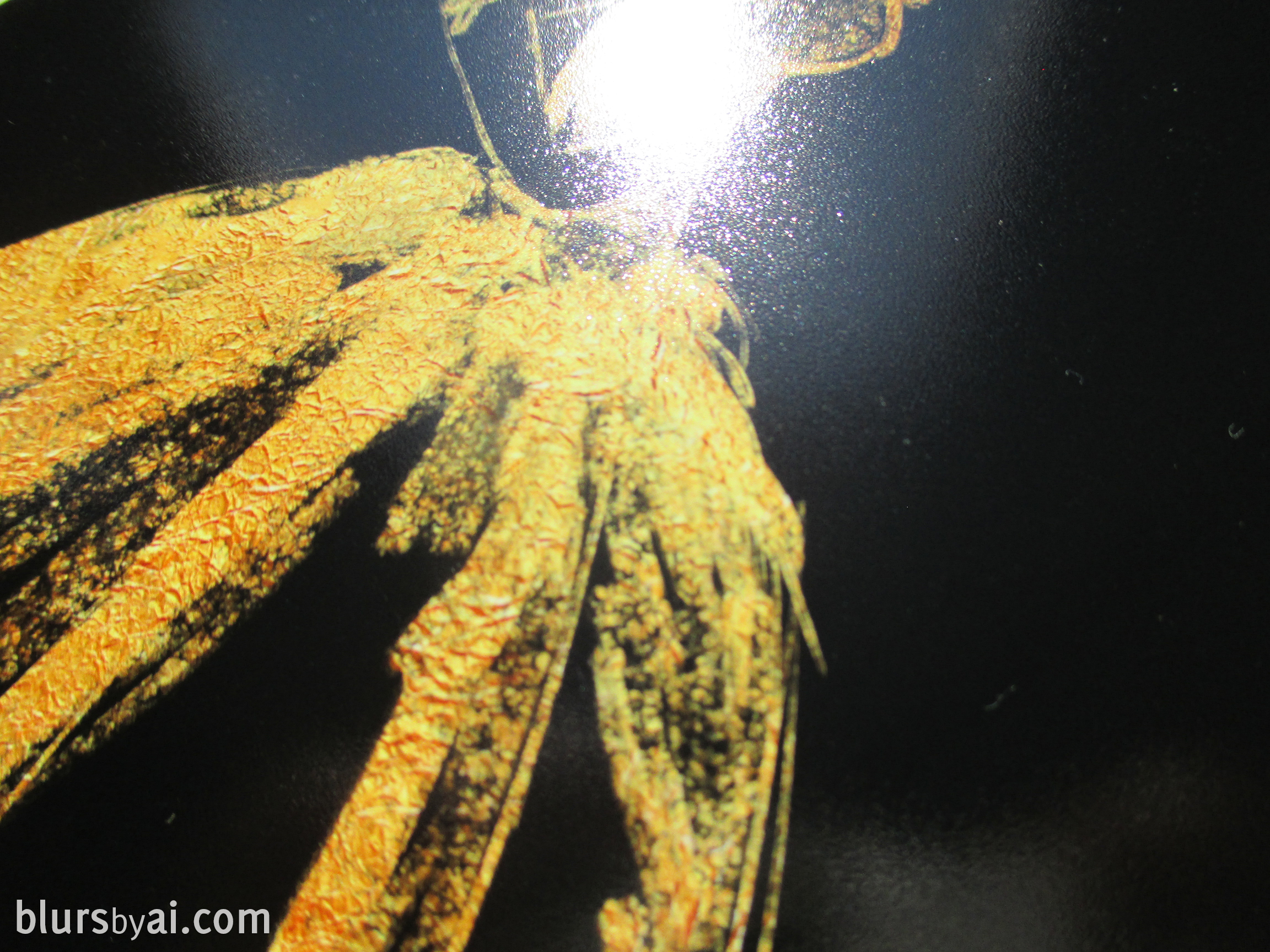 photograph about Printable Gold Foil Paper called printable gold foil upon luster image paper 2