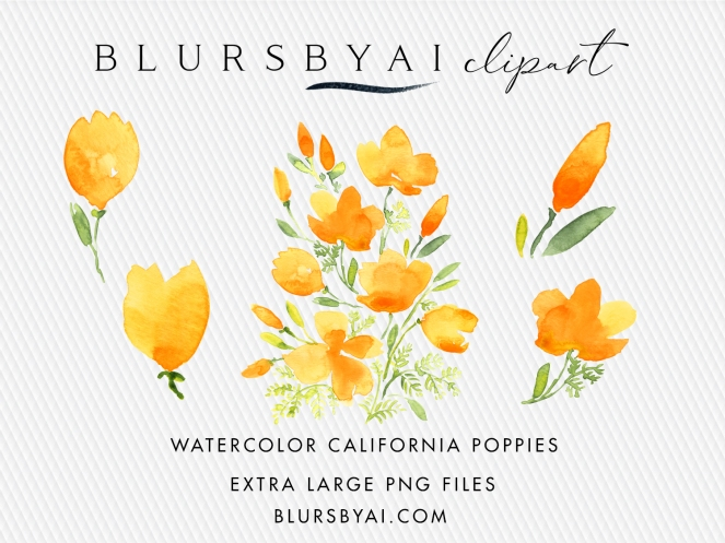 blursbyai watercolor california poppies extra large clipart commercial license (2)